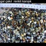 cakilrenkli_20